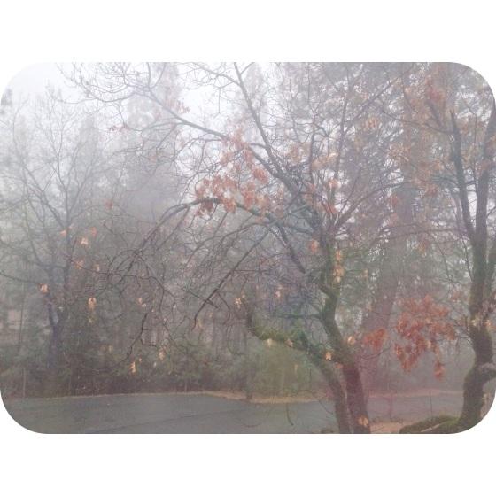 20140111-212031.jpg